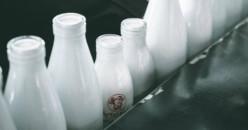 Inilah Perbedaan Jenis Susu dan Cara Mengonsumsinya